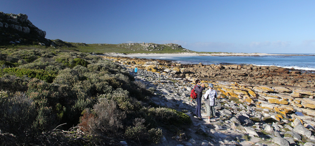 The walk to the famous Cape Point shipwrecks crosses a variety of terrain, including the rocky coastline. Photograph by  Dave Knight.