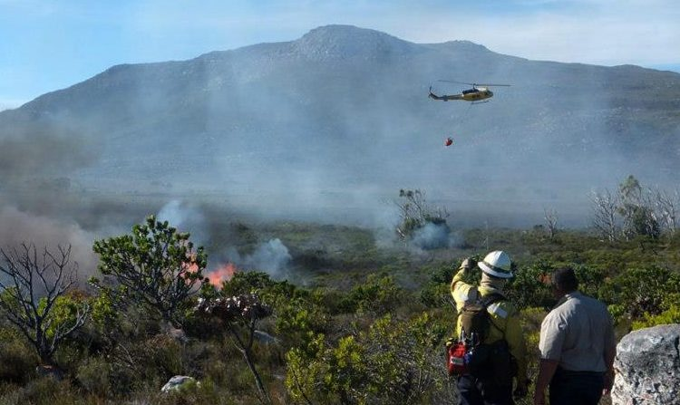 Prescribed burns at Cape Point – Where, When and Why