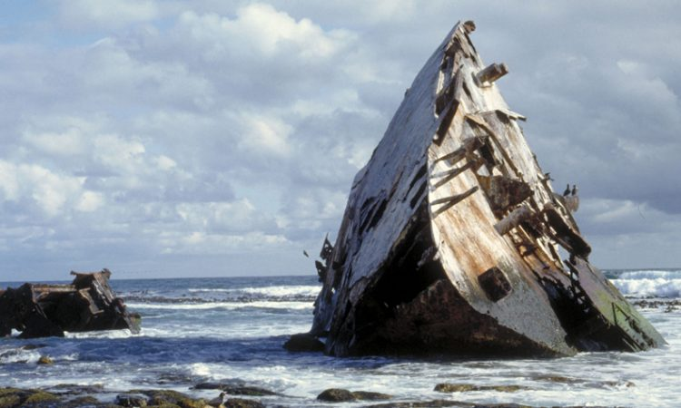 Cape Point's shipwreck trails