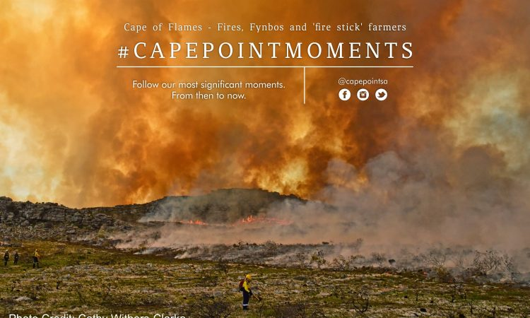 Cape of flames