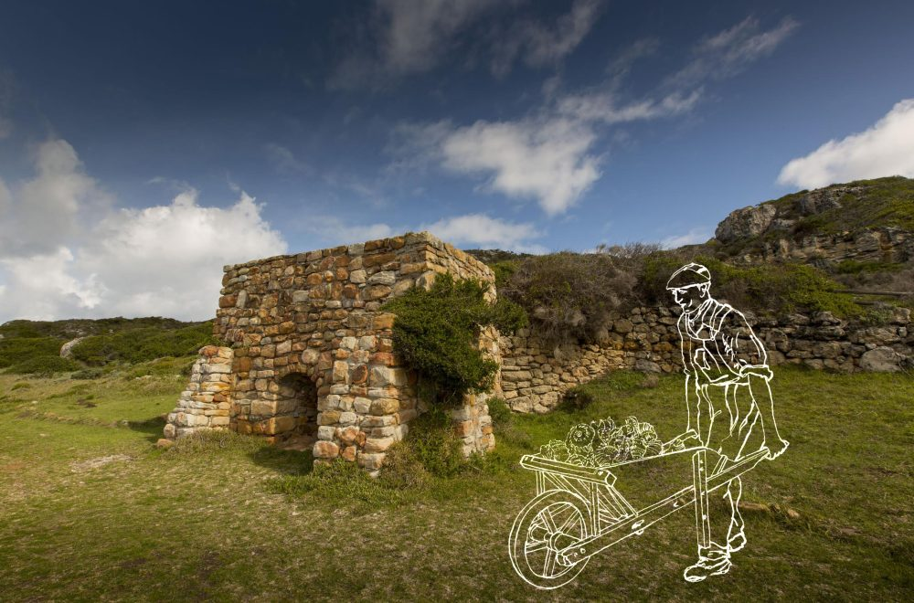 Cape of Migrants: The Story of Buffelsfontein Farm