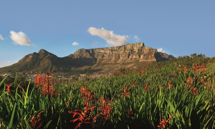 Table Mountain implements measures to save water