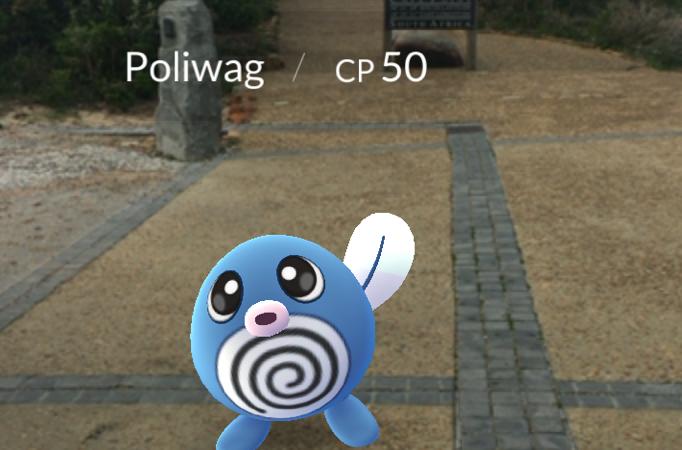 Pokemon Go fever at Cape Point