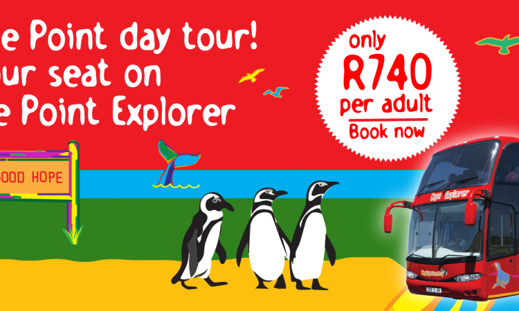The Cape Point Explorer bus