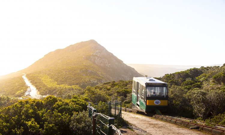 SANParks to implement new gate technology for Table Mountain- and West Coast National Parks