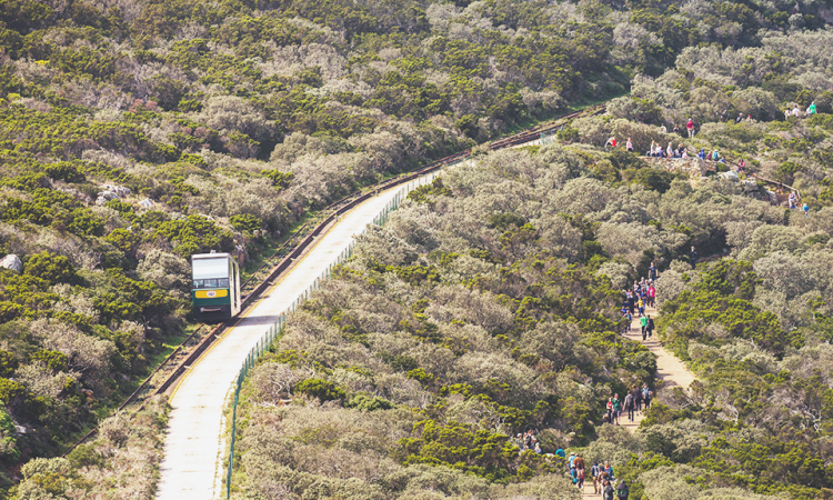 New Cape Point Rates For 2019/2020