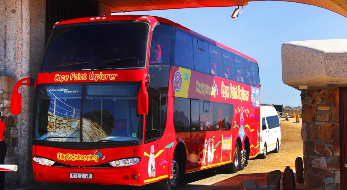 City Sightseeing's Cape Point & Penguin Explorer Tour is back in March 2021.